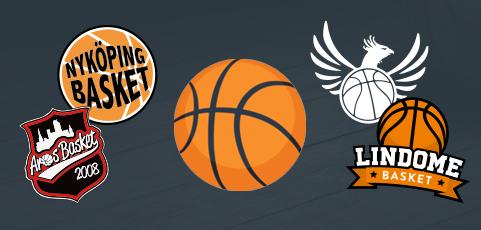 Många basketklubbar väljer laget.se som föreningssystem